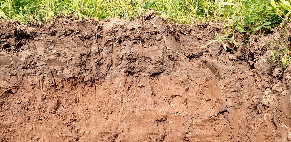 Imagebild Bodenklassen: Querschnitt von Boden